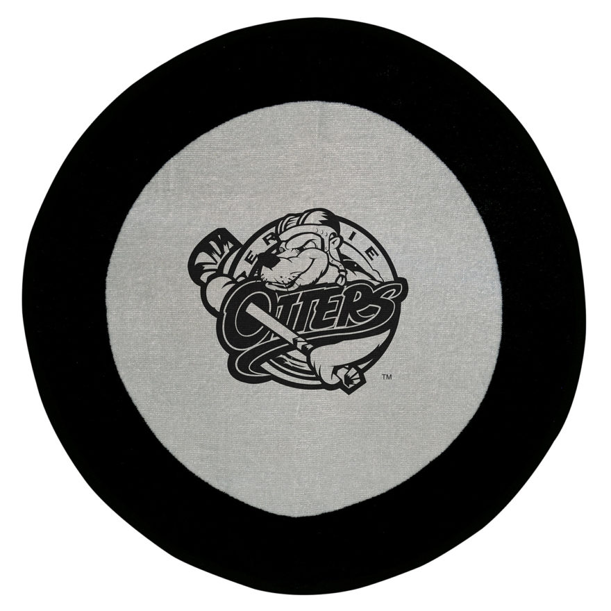 Hockey Puck Stock Design