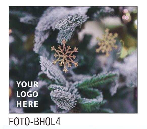 FOTO-BHOL4