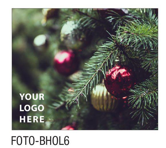 FOTO-BHOL6
