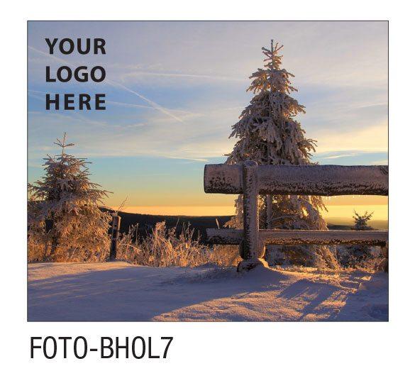 FOTO-BHOL7