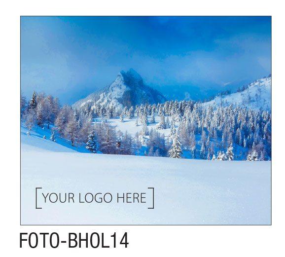 FOTO-BHOL14