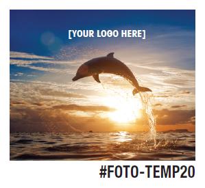 FOTO-TEMP20